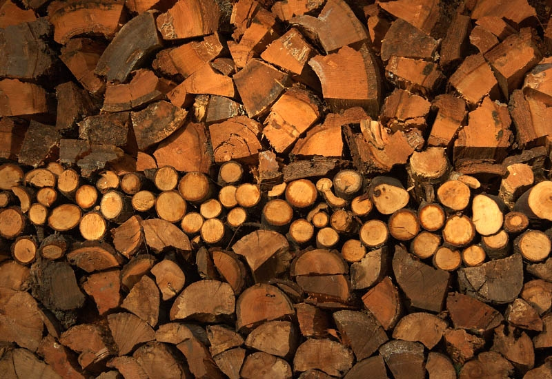 wood-pile-art